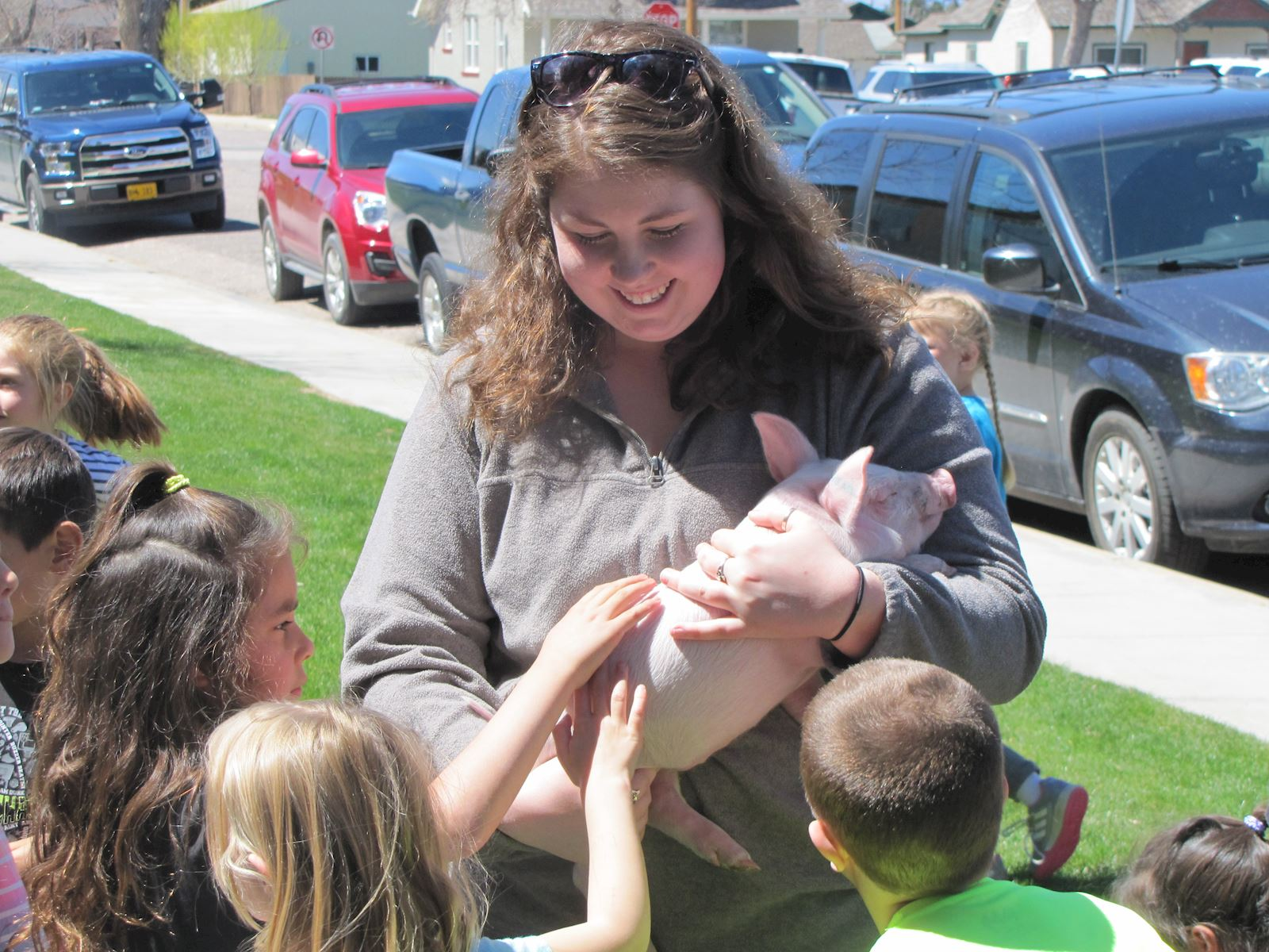 Wheatland students learn about pig farming