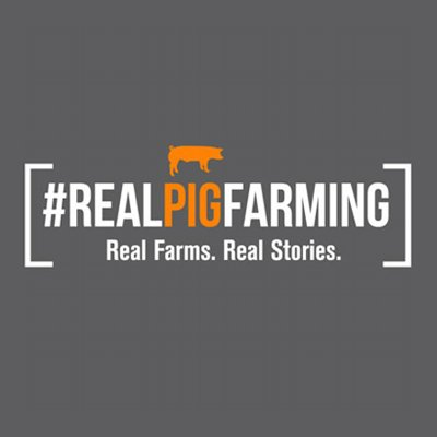 AMVC interns selected to participate in #RealPigFarming Social Forces