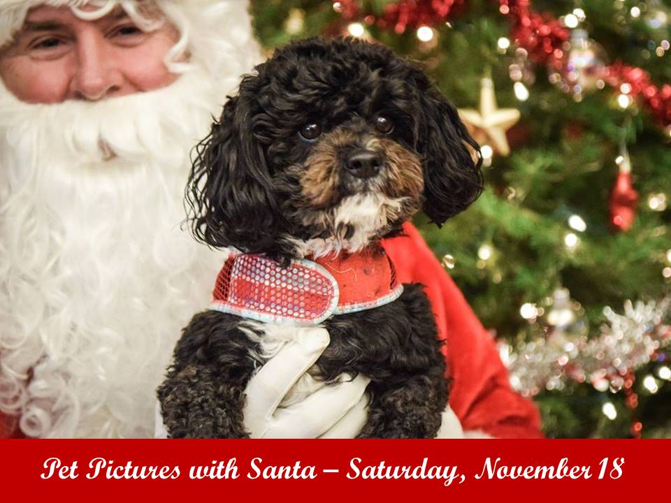 Mark your calendar for Pet Pictures with Santa