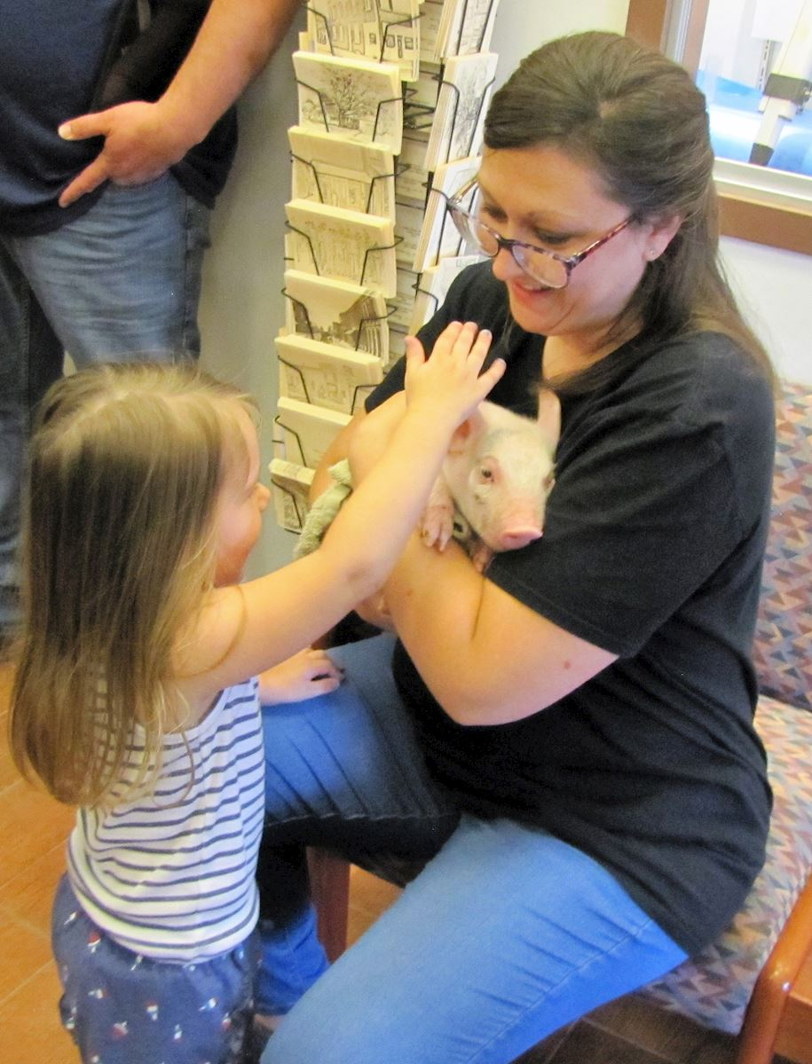 Adult and teen services librarian, Amanda Boksa, holds a piglet for young library patrons to pet.